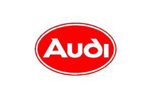 Logo Audi 55 cm