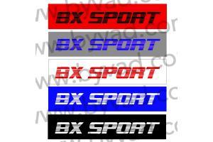 Cache plaque immatriculation BX Sport