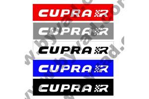 Cache plaque immatriculation Seat Cupra R