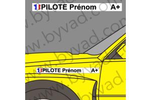 Lettrage Pilote Copilote 11