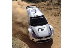 Sticker de toit Volkswagen Motorsport
